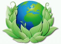 Cuiado del Medio Ambiente