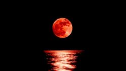 Buscando la Luna
