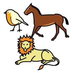 ¡Entre animales! Conociéndolos de cerca
