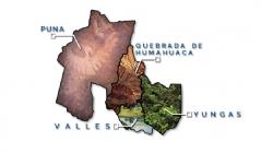 Fauna de Jujuy