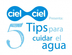 5 tips para cuidar el agua 2