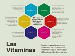 Todas las vitaminas