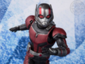 ANT – MAN