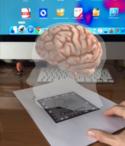 El cerebro – Juliana Piedrahita CCSD