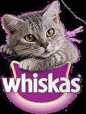 Comercial Whiskas