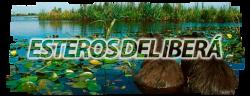 Los Esteros del Iberá