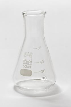 Protocolo extracción ADN