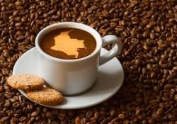 El sentir del café UPN