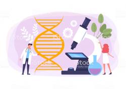Genética básica