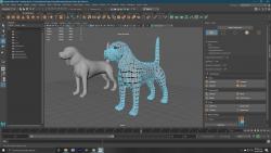 Perro Modelado
