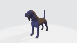 Arriola's Doggo