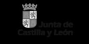 JuntaCastillaLeon